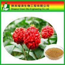 Factory Supply Radix notoginseng extract powder