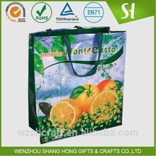 china Alibaba Non Woven Vegetable Bag/Reusable Shopping Bags