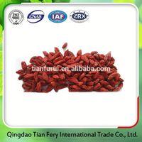 New Food 7d Dried Mango
