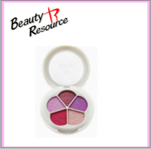 Wholesale Makeup Eyeshadow Palette/Flower Shape Eyeshadow
