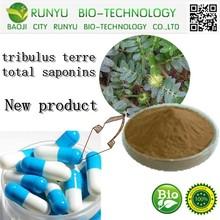 tribulus terre fruit extract tribulus terre total saponins 20%-98%