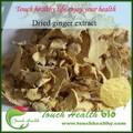 fornecer touchhealthy realçador de sabor gengibre extrato da raiz de suplemento de saúde