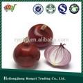 2014 cebolla roja fresca para la venta
