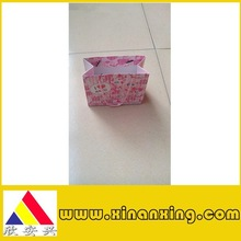 pink gift paper bag with rope handle