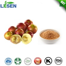 ISO factory long time supply Camu camu powder
