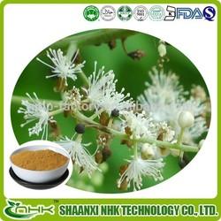cimicifuga racemosa extract / black cohosh / triterpene glycosides 2.5%