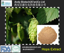 Anti-Fatigue Factory Supply High Quality Organic Hops In Herbal Extract