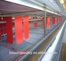 free range chicken cage in chicken farm