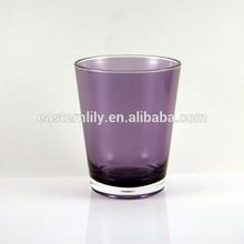 460ml BPA free Plastic Acrylic Double wall water glass