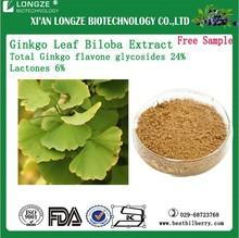 supply high quality Ginkgo biloba leaf extract ginkgo biloba leaf extract powder bulk