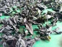 Kosher natural food wholesale dried seaweed