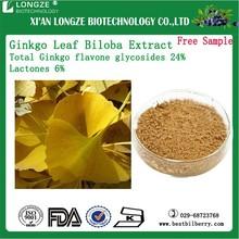 Natural Ginkgo biloba Extract Ginkgo biloba P.E. Ginkgo biloba Leaf Extract