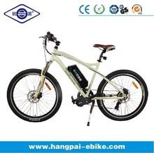 fixed gear mid drive motor bike(HP-E003 new)