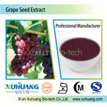 ISO Certified Factory supply 95% OPC powder Grape seed extract
