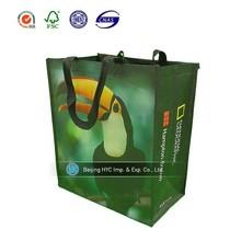 Environmentally friendly pp non woven foldable kids shopping bag