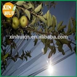 garden anti hail net/vegetables protection net