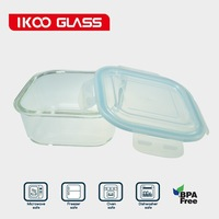 square 570ml borosilicate glass lunch box for toaster