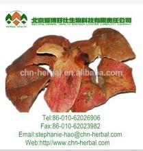 Factory supply pomegranate bark P.E/Pomegranate Extract/pomegranate peel extract