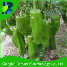 Seeds for hybrid horn pepper, red/green/black horn pepper seeds