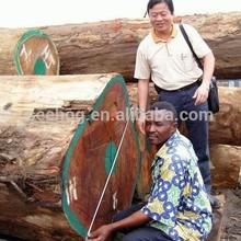 African rose wood/logs/timber export to China/shanghai/shenzhen/guangzhou