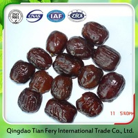 China Manufacture Red Chinese Dates Fruit