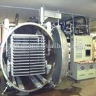 Mini freeze drying machine for sea cucumber, food, fruit, vegetable