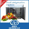Nueva llegada lote tipo de fruta de la máquina de deshidratación