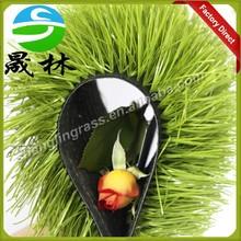 Brush Artificial Turf Grass Mini Soccer