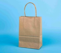 Plain brown kraft paper bags