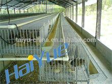 taiyu 6 capas de codorniz jaula de granja