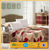 stock branded names of soft lamb fleece mexican blanket on the bed