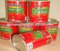 Sıcak satış konserve domates salçası, domates sosu, domates ketçap