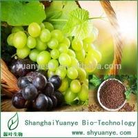Top quality 98% Procyanidin B2 CAS:29106-49-8