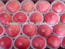 Fresh apple list of yellow fruits kirkland signature company names of fruit juices