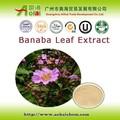 düşük kan şekeri Banaba yaprağı ekstresi