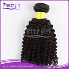 Afro kinky curly hair weft,afro textured clipin hair extension,virgin brazilian afro twist noble gold hair