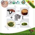ganoderma orgánico téverde bolsita de té de mezclado