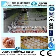 chicken egg grading machine/egg grading machine price/stainless steelegg grading machine chicken egg hatching machine