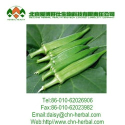 Quality product Okra Extract,Dried Okra powder