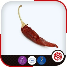Dry Chilies Pepper