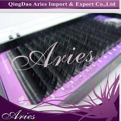 eyelash extension false eyelashes fake popular grafting natural artificial beauty supplies Pro Top Eyelash