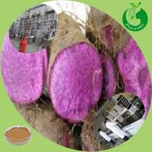 Best price supply Chinese yam powder/purple yam powder