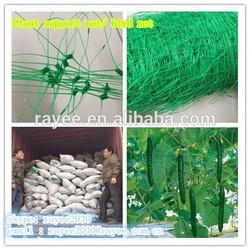 Bop netting/Bop stretched mesh/trellis netting / red de apoyo central