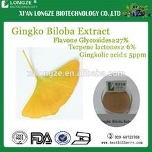 European(Germany)Standard Ginkgo Biloba Extract Ginkgo Flavone Glycosides 22.0%-27% Terpene Lactones 5.0%-7.0%