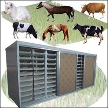 cattle fattening / cattle ranching / beef cattle
