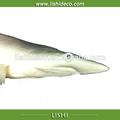 En plastique de poisson requin réaliste, faux