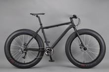 26 inch Snow bike giant propel