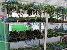 158 metal and plywood nursery trolley 1350*565mm Nursery plant Danish flower trolley TC4622 Seeding bed with wheels
