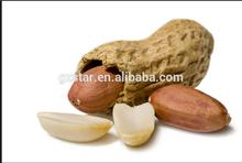 Chinese low price red skin raw peanuts,Good taste big size roasted peanuts,High quality peanuts