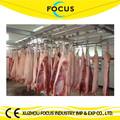 o foco da indústria de abate de suínos linha de equipamentos de abate de suínos